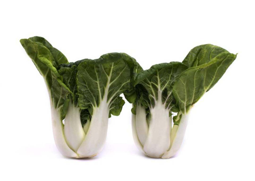 Pak Choi Toy Choi - compact with thick broad milky white stems