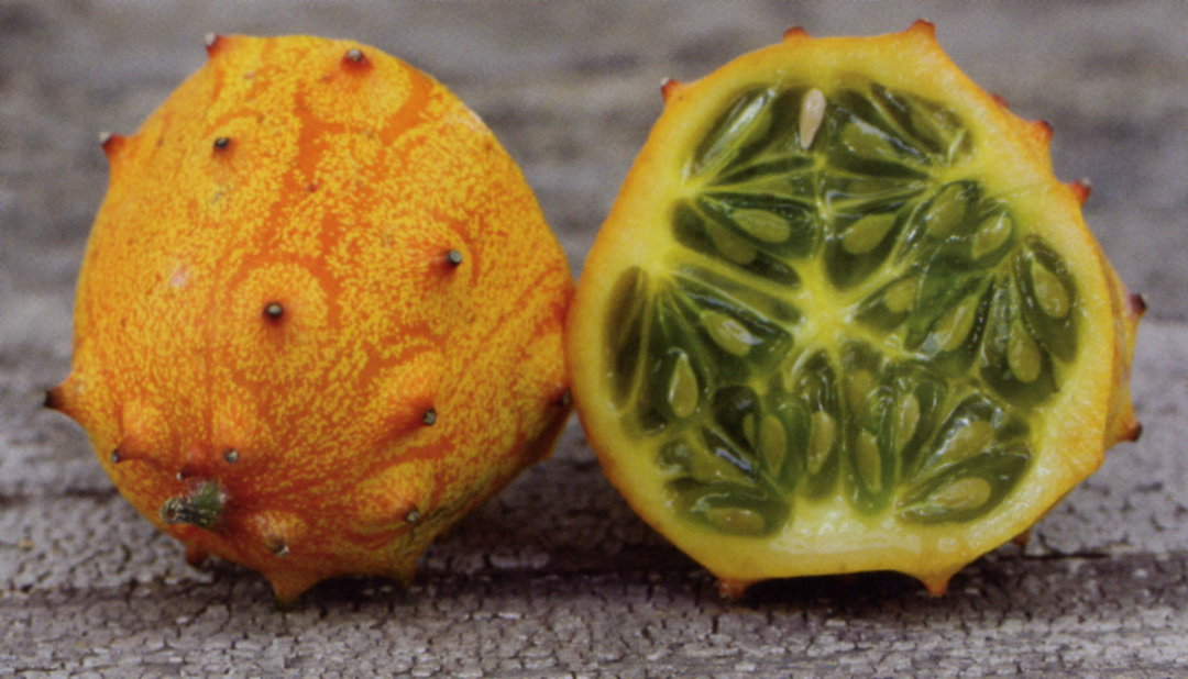 Kiwano Horned Melon - spiked yellow skin cucumber