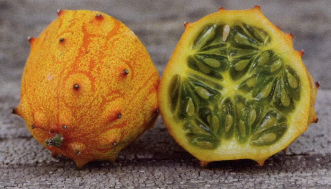 Kiwano Horned Melon image 0