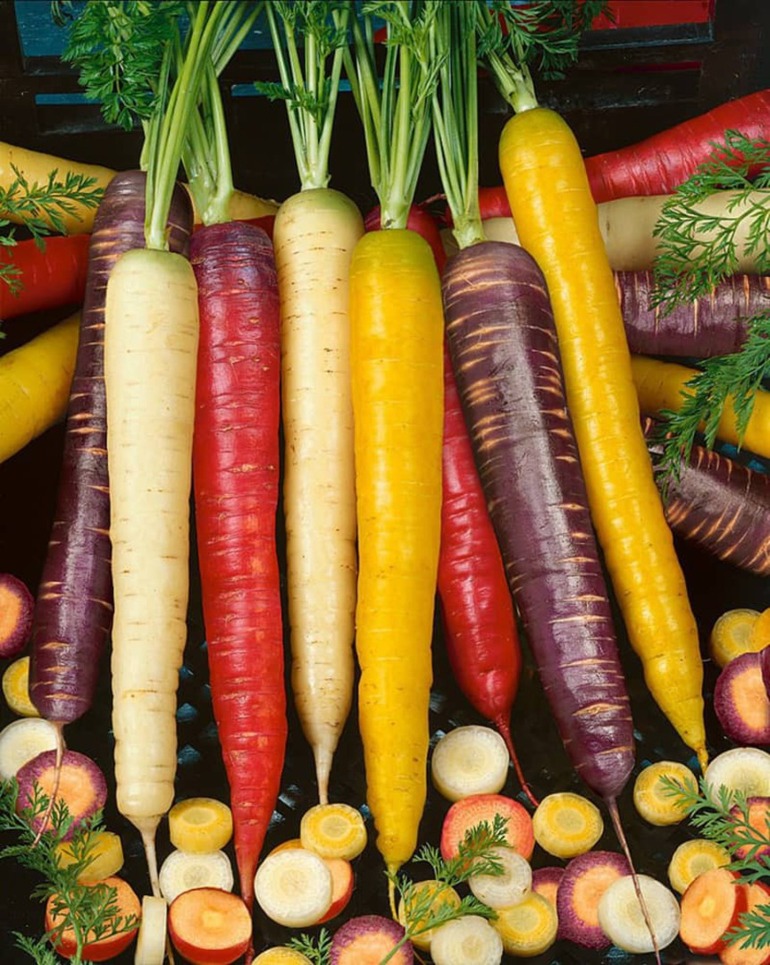 Carrot Rainbow Blend - yellow, white, purple, yellow and red carrots