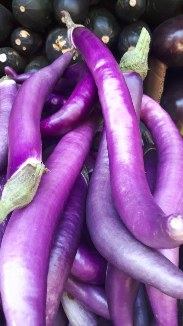 Eggplant Dok - long violet pink skinned fruit