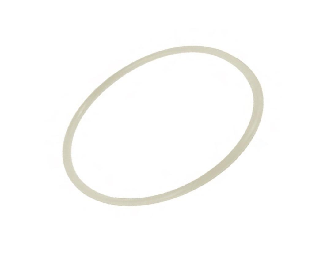 Slow Down O-Ring SM102 (New) image 0