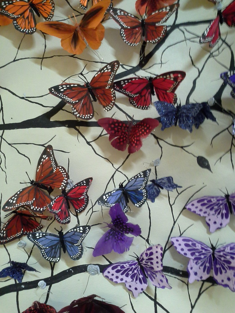 Butterfly image 0