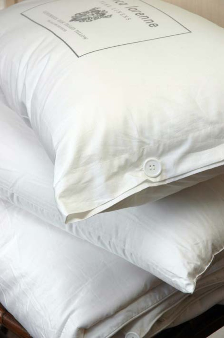 Bianca Lorenne - Silk Pillow Standard and Lodge (King) image 0