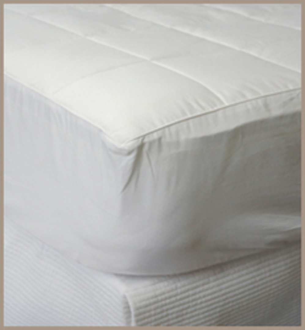 Bianca Lorenne - Silk Filled Mattress Underlay / Topper image 0