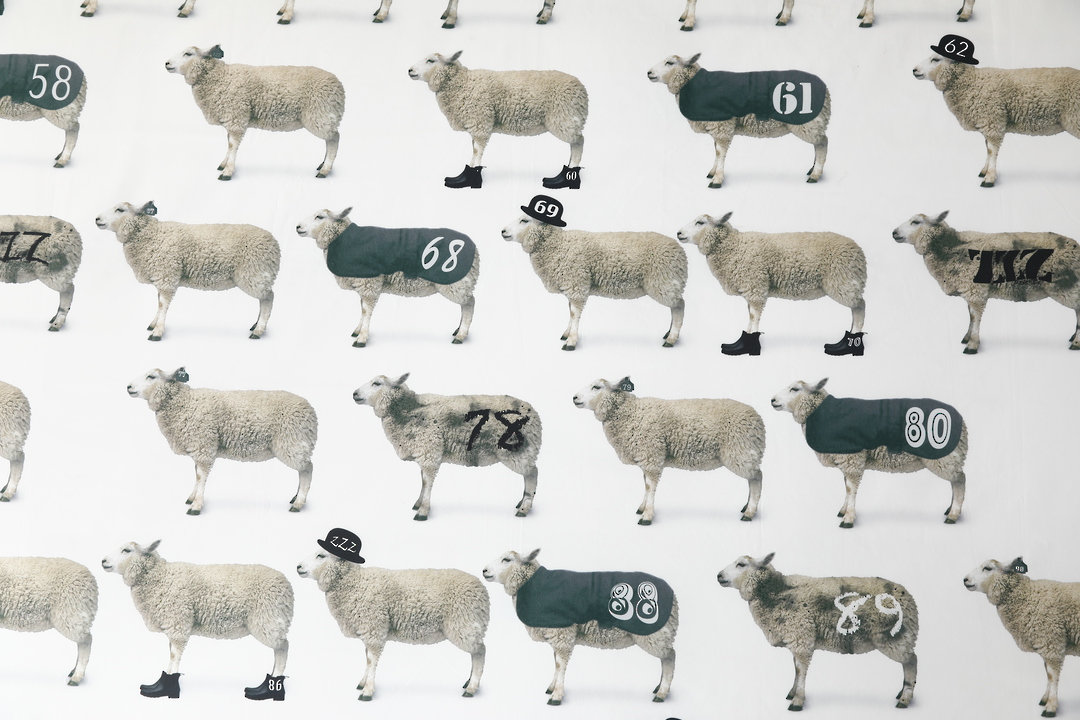 MM Linen - Counting Sheep Duvet Set image 1