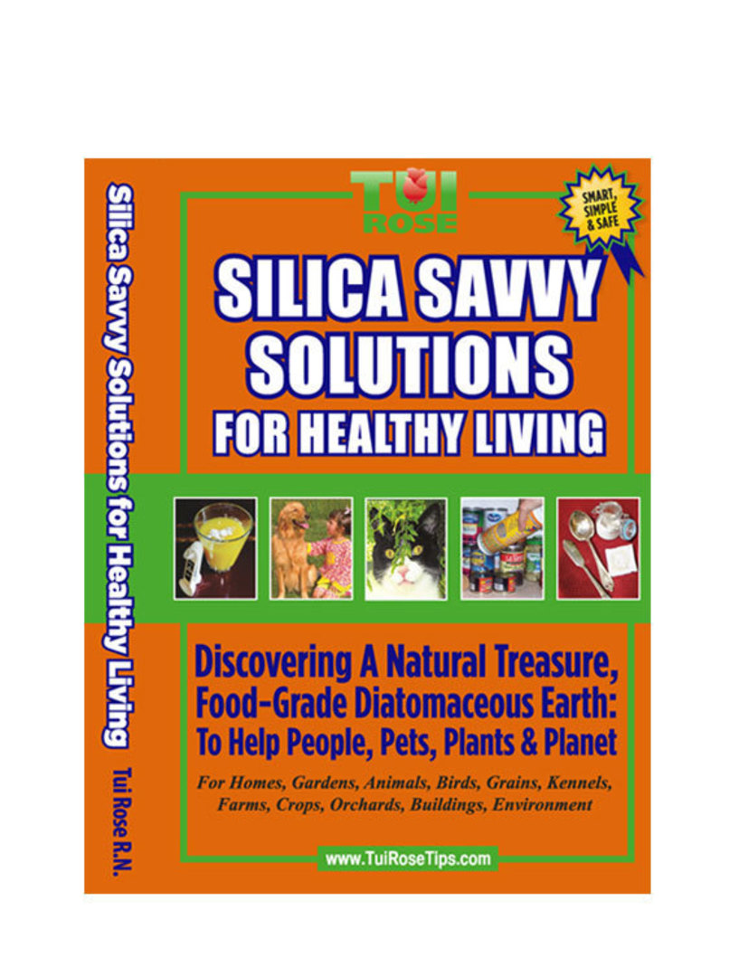Book: Silica Savvy Solutions for Healthy Living - Tui Rose image 0