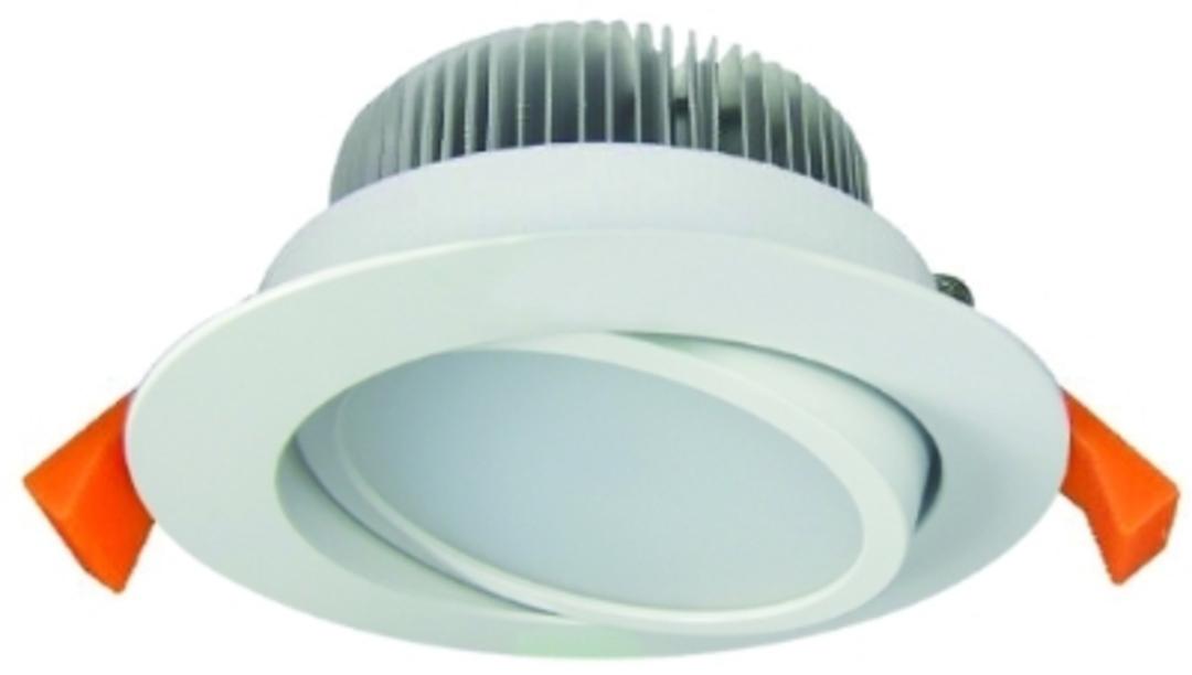 Eurotech ICDLT13W  13 Watt tilting downlight image 0
