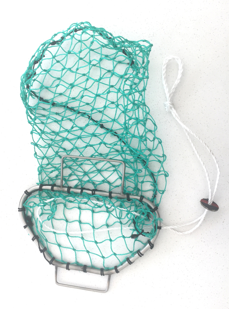 Scallop/Paua Bag Wired Frame image 0