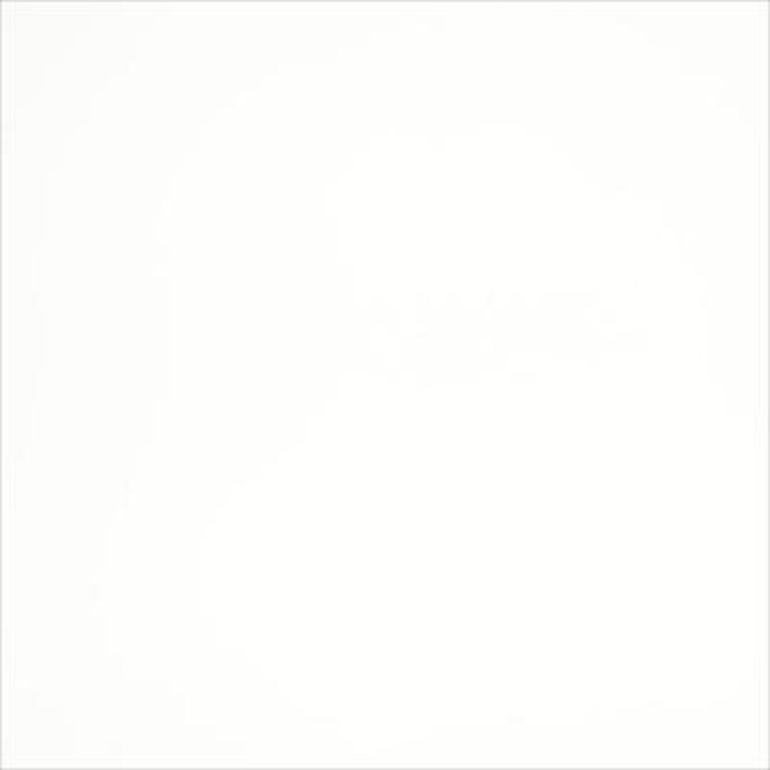 Arctic White image 0