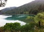 Pelorus Sound