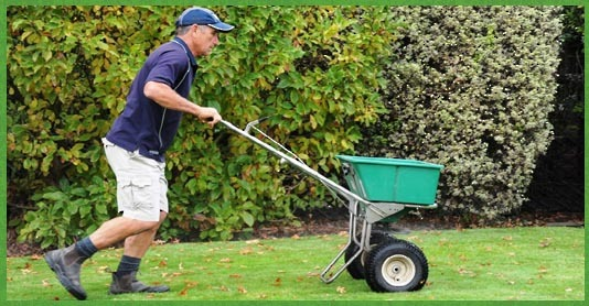 lawn care auckland