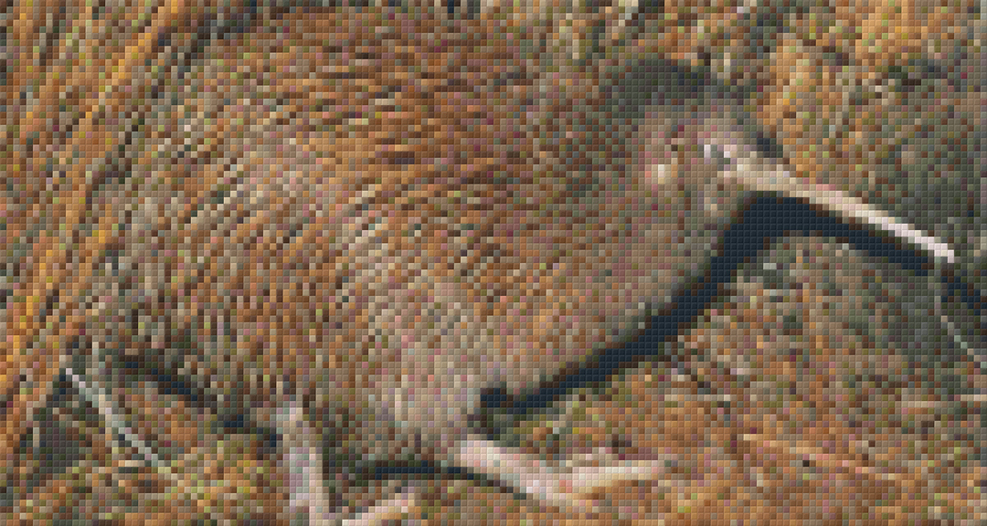 Brown Kiwi Six [6] Baseplate PixelHobby Mini-mosaic Art Kits image 0