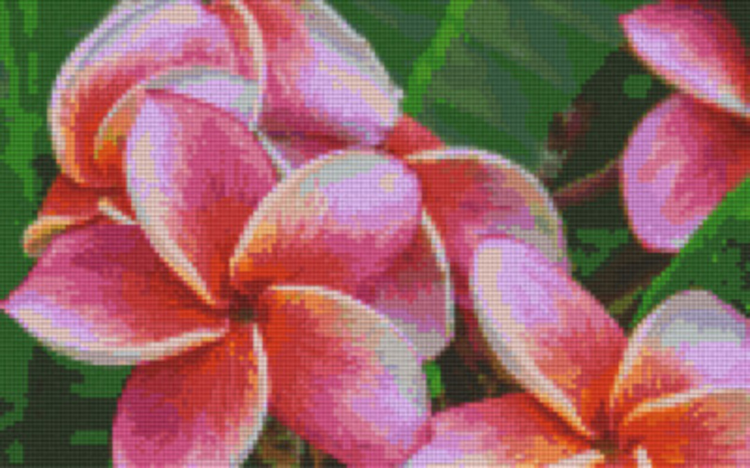 Frangipani Eight [8] Baseplate PixelHobby Mini-mosaic Art Kits image 0