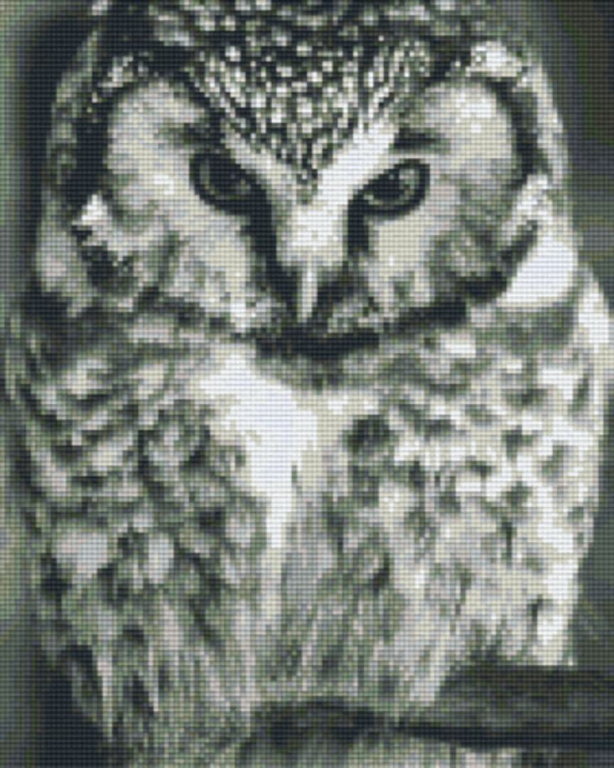 Owl In Black & White Nine [9] Baseplate PixelHobby Mini-mosaic Art Kits image 0