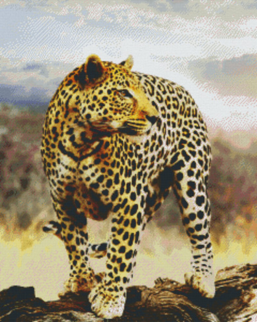 Leopard Thirty Six [36] Baseplate PixelHobby Mini-mosaic Art Kits image 0