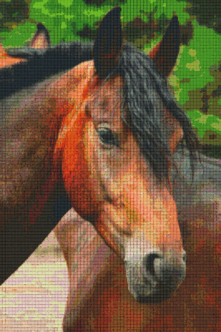 Horse Thirty [30] Baseplate PixelHobby Mini-mosaic Art Kits image 0
