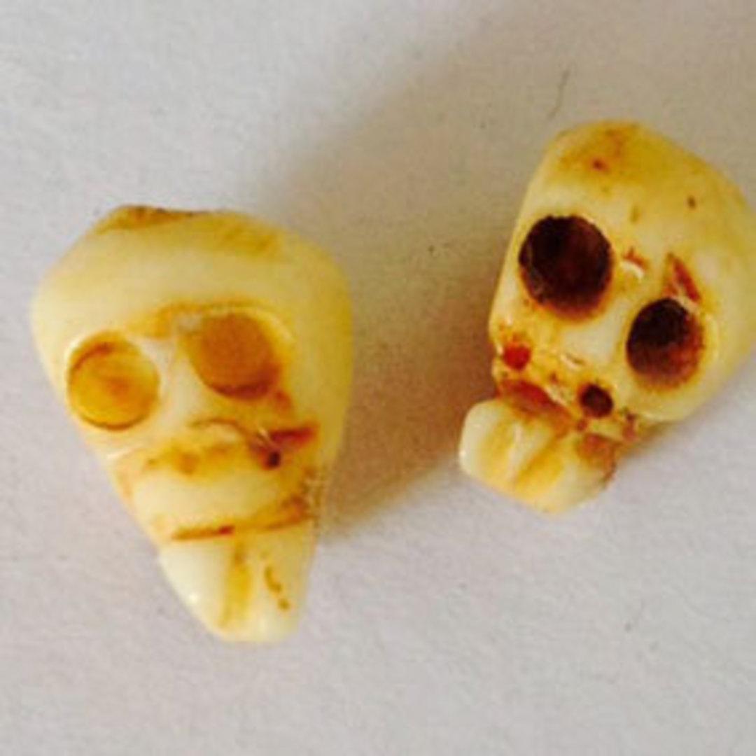 Bone Bead: Baby Bone Skull 8mm x 6mm image 0