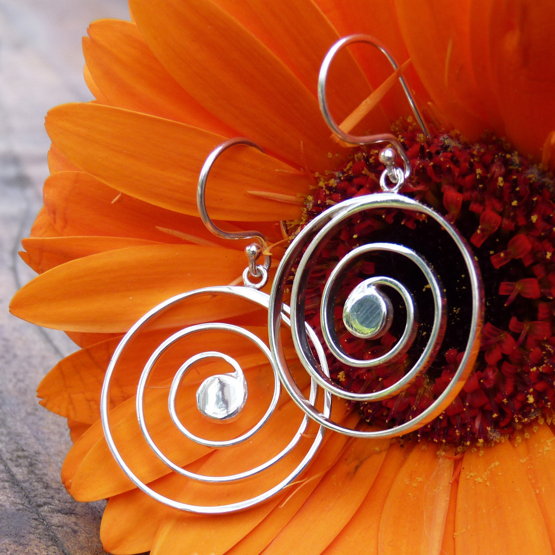 Round spiral earrings on hook image 0