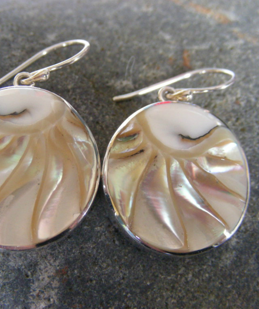 Round Nautilus Shell Silver Earrings image 2