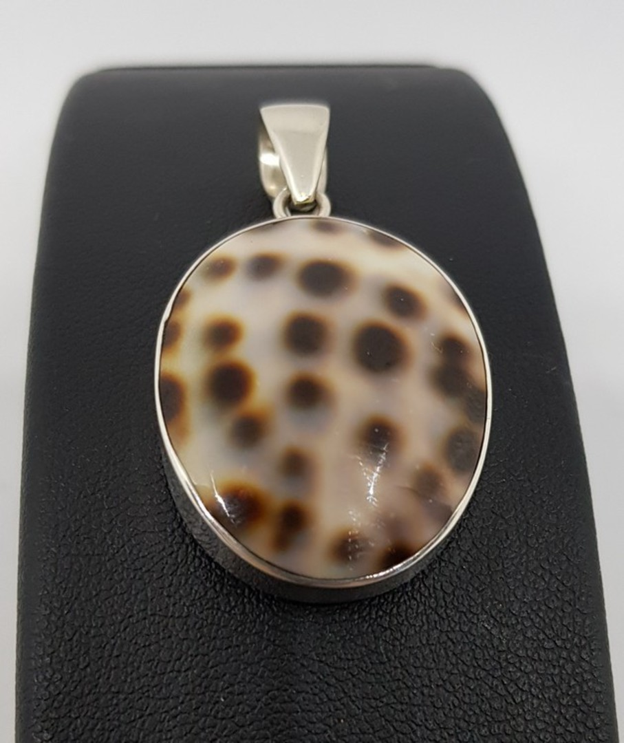 Oval cowrie shell pendant from the South Pacific image 1