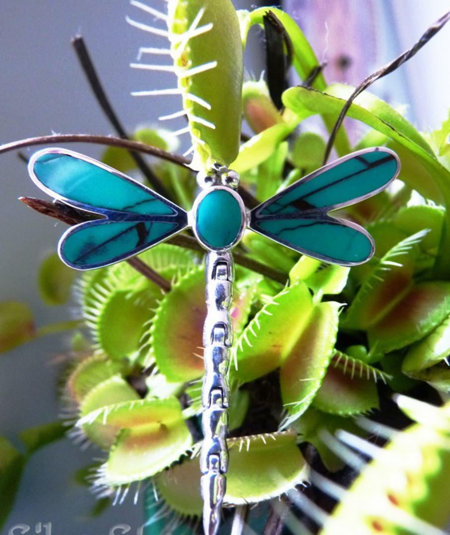 Turquoise coloured dragonfly pendant - sterling silver image 4