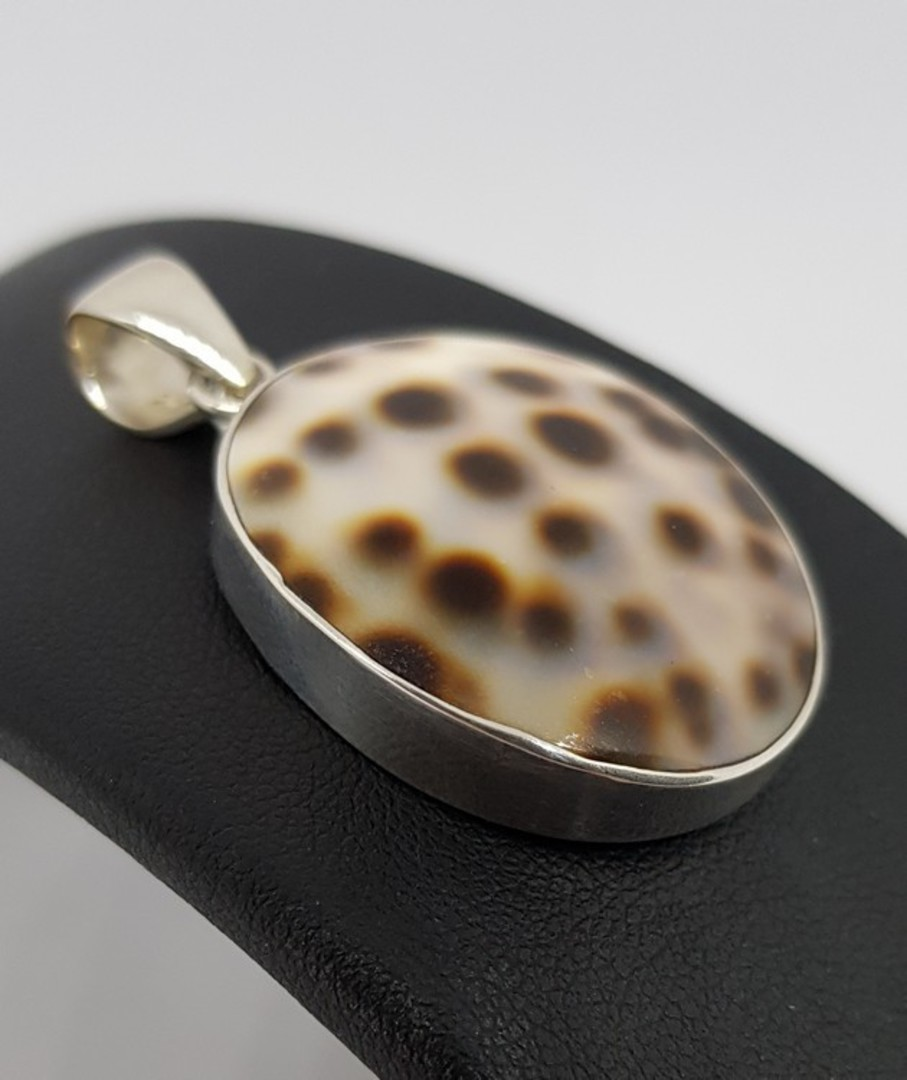 Oval cowrie shell pendant from the South Pacific image 2