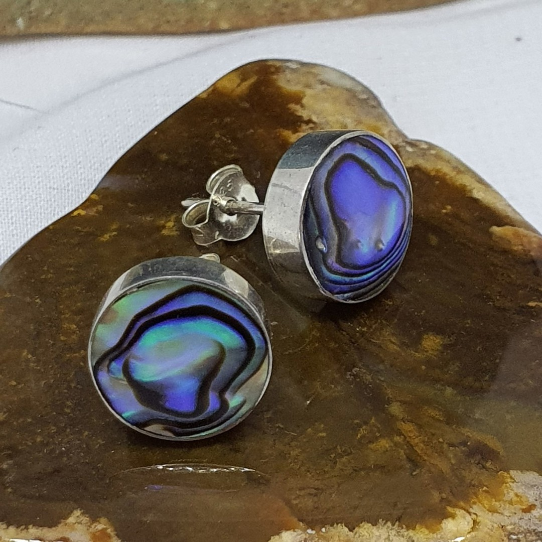 Round paua shell stud earrings image 1