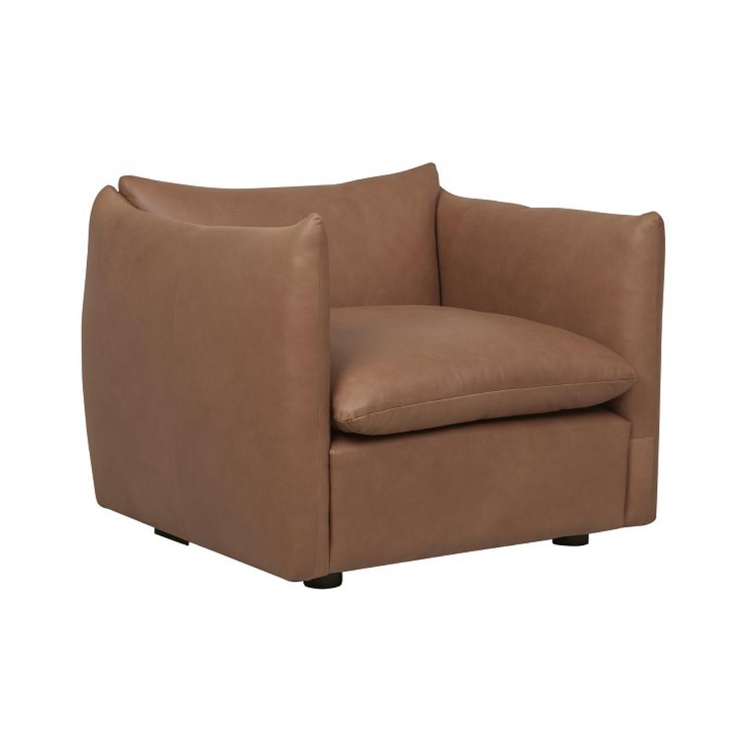 Humphrey Peak 1Str Sofa image 5