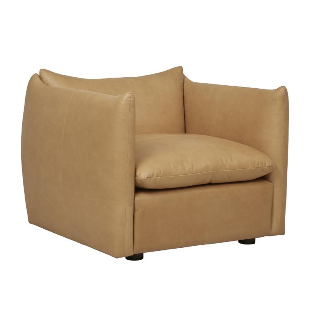 Humphrey Peak 1Str Sofa image 6