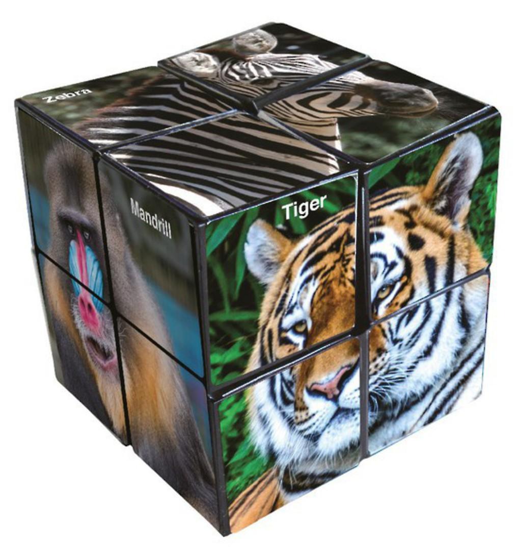 Star Cube Wildlife image 1