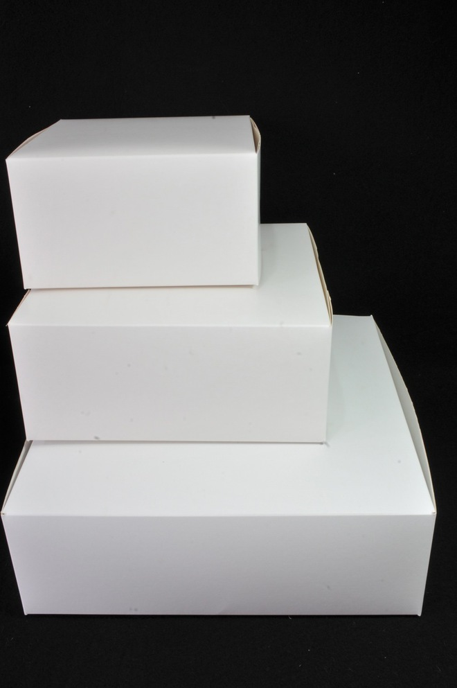 Cake boxes 10 x10 x 4 inch, 254 x 254 x 102mm, Bundles of 100 image 0
