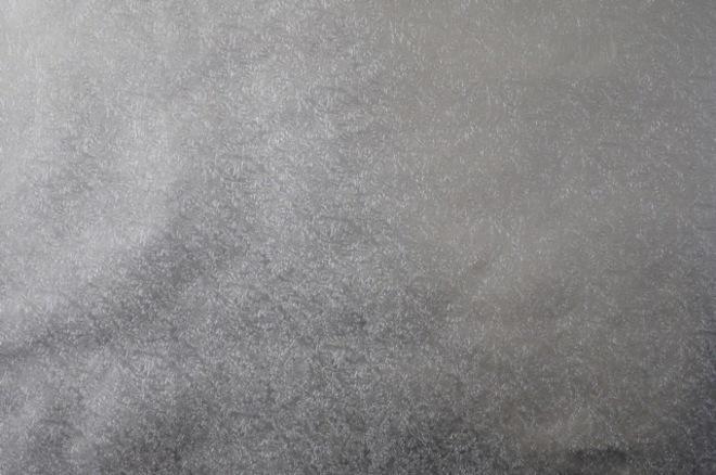 Cakeboard Paper Fern Leaf Silver 500mm (30m) image 0
