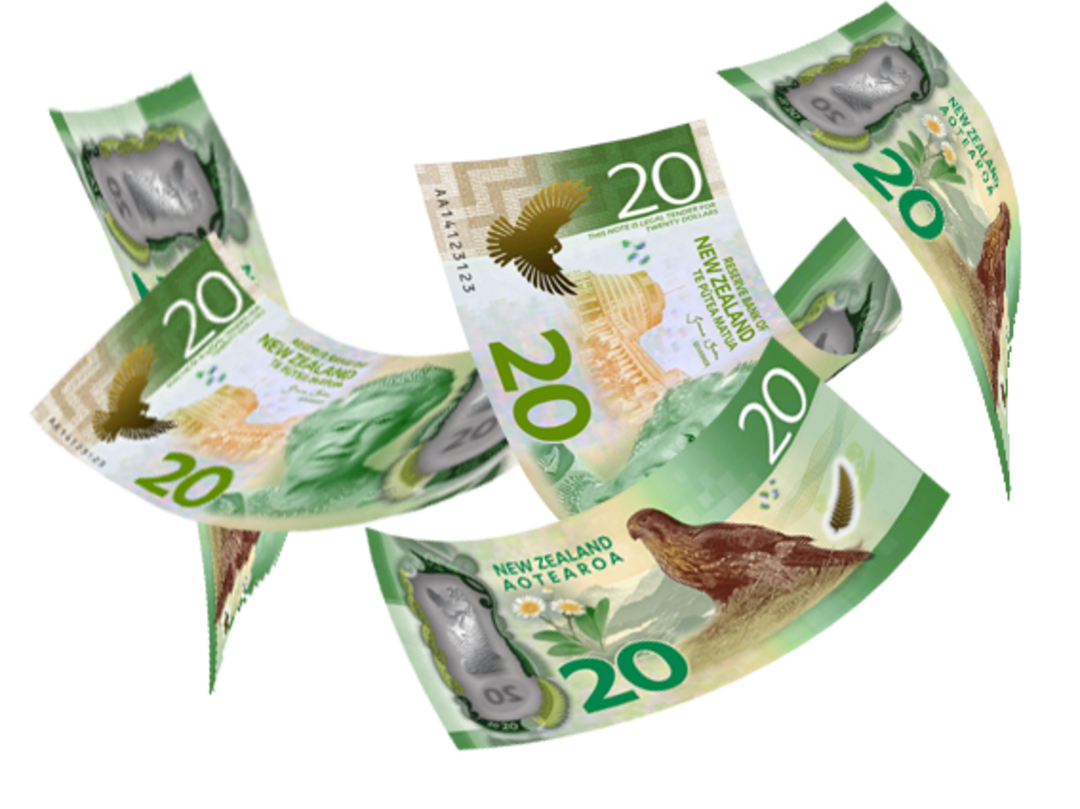 $100 koha / donation image 0