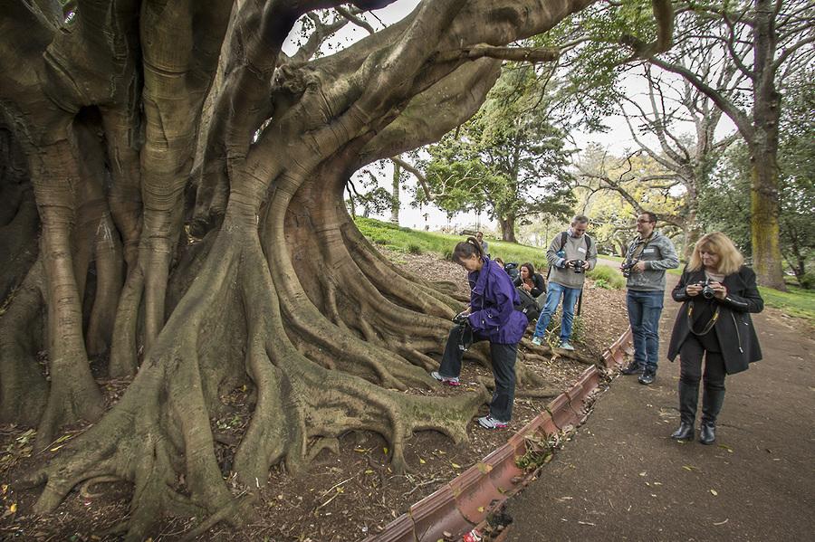 Auckland Photography Class