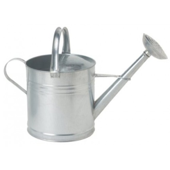 Galv 12Lt Watering Can c/w ros image 0