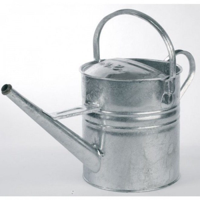 Galv 12Lt Watering Can no rose image 0