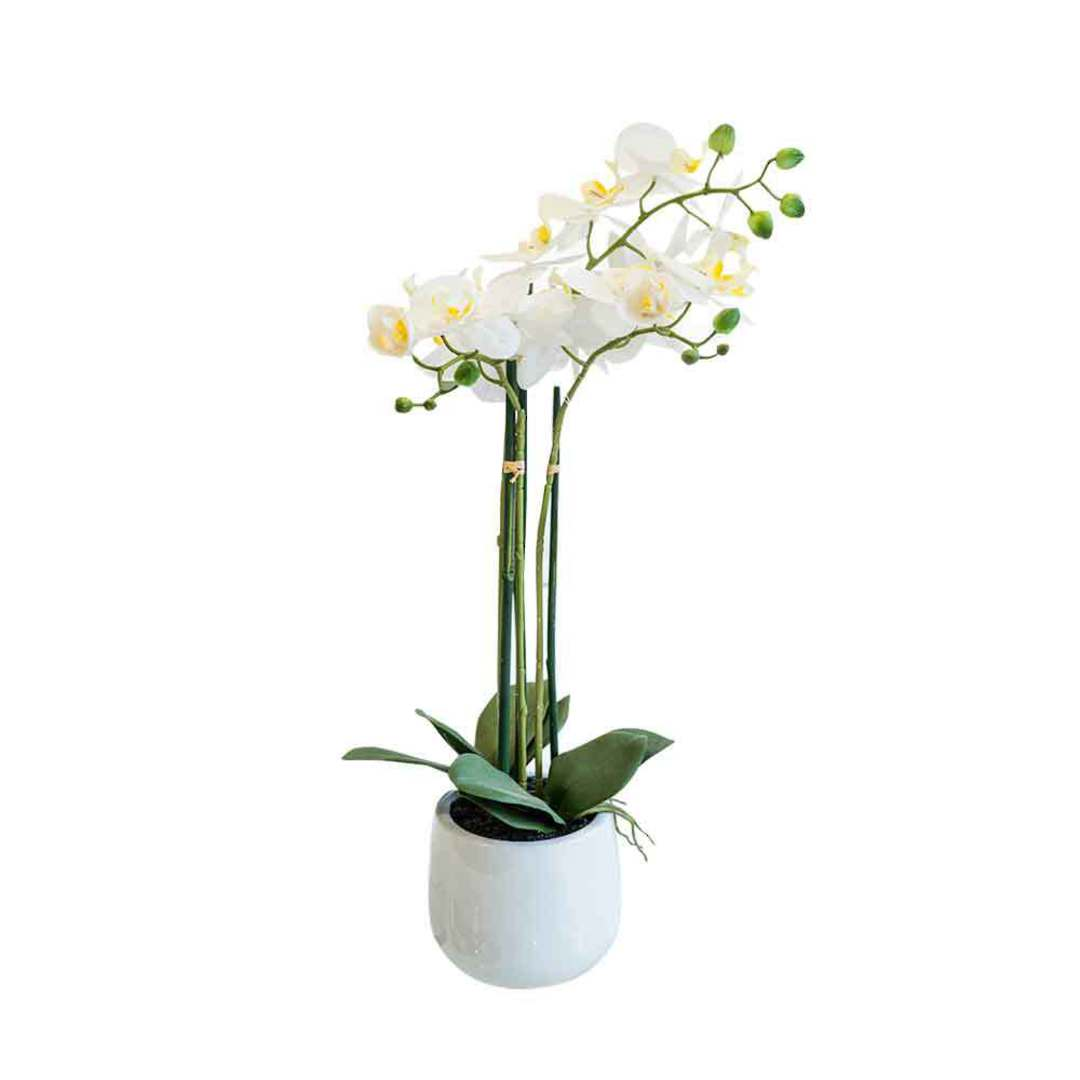 Real Touch Orchid 3 Spray image 0