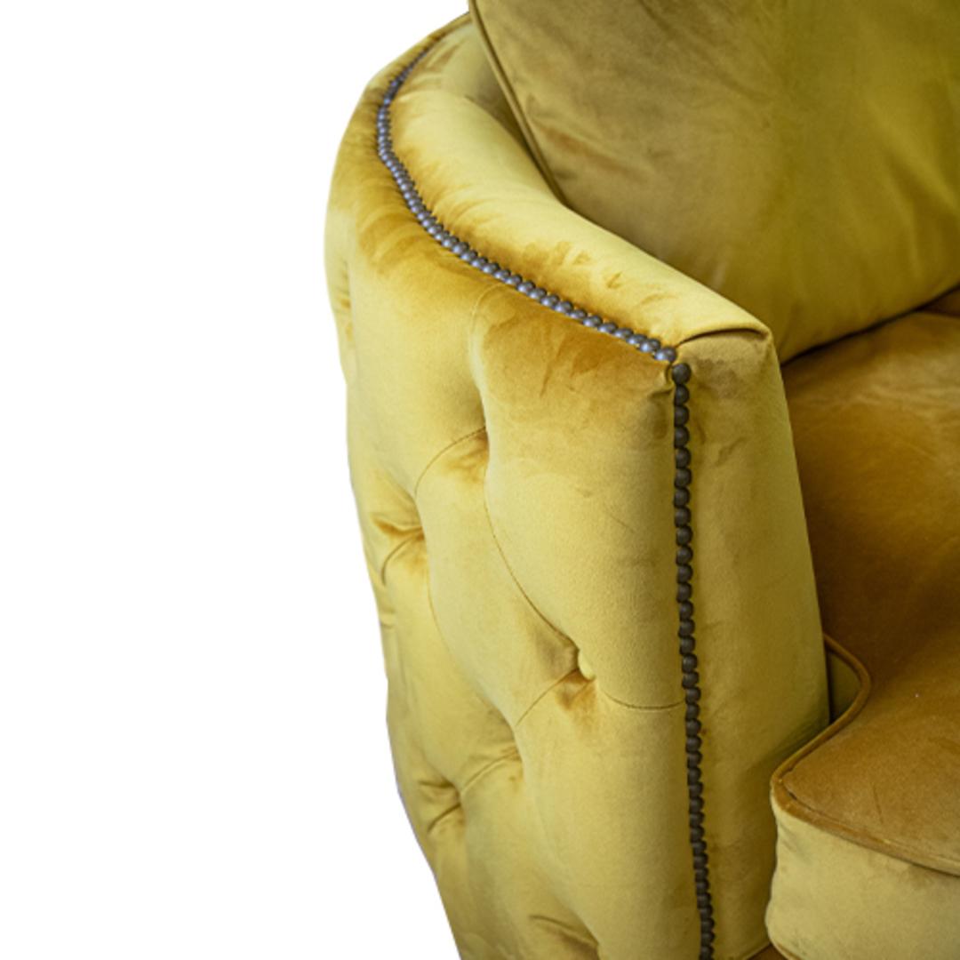 Roxy Twister Chair Plush Turmeric image 4