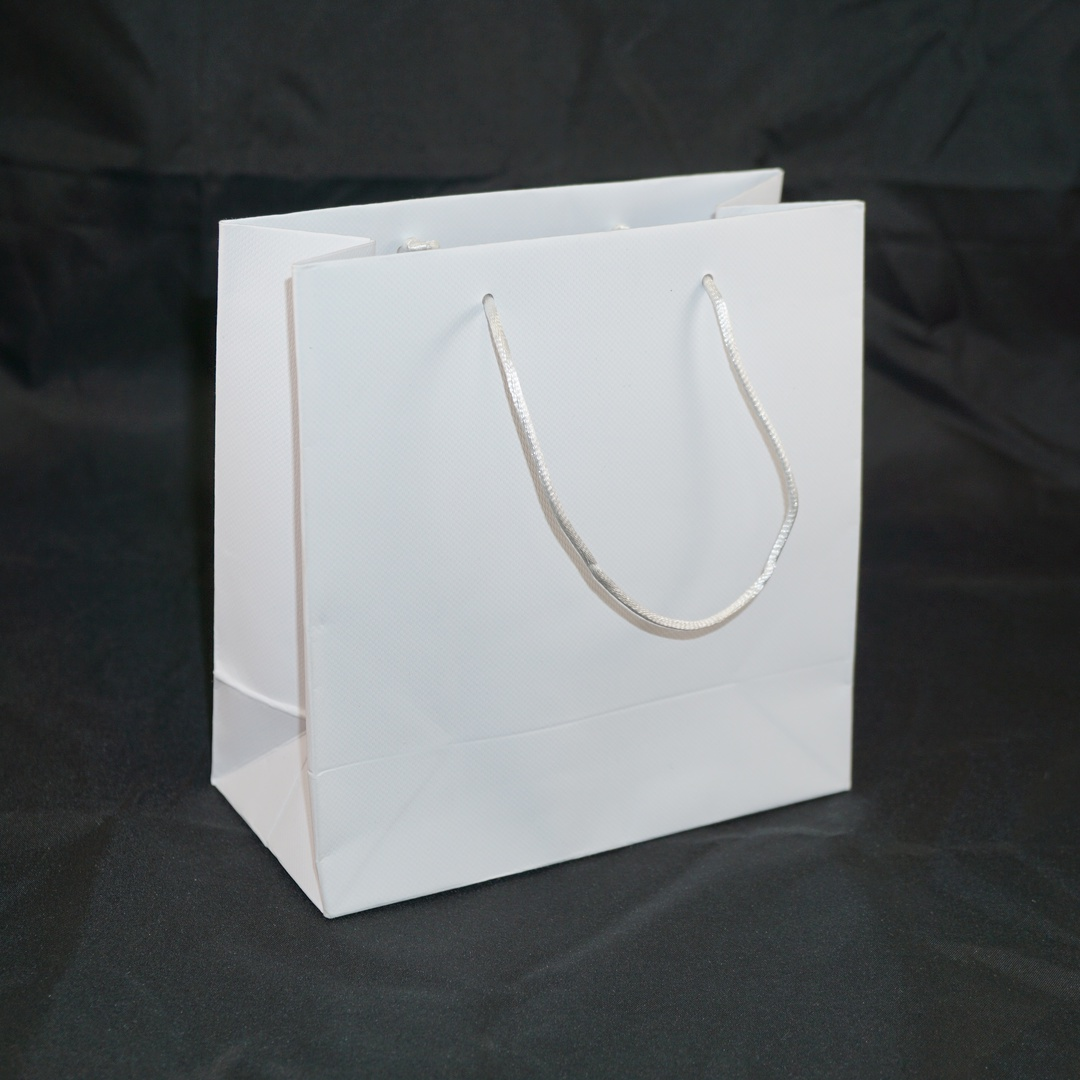 SMALL WHITE CARRY BAG WITH WHITE STRING HANDLES image 0