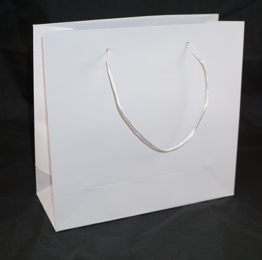 MEDIUM WHITE CARRY BAG WITH WHITE STRING HANDLES image 0