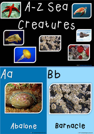 A–Z | Sea Creatures | Inquiry | Vocabulary