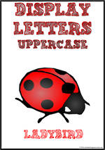 Display Letters | Uppercase | Red | Set 16