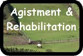 Agistment & Rehabilitation