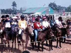 Cheski (in red) eyeing up the opposition at the start of a Mule Race