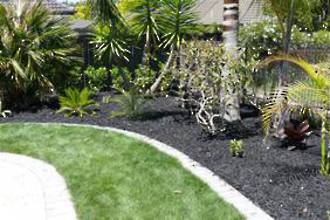 Black mulch bags delivered- 10 bags