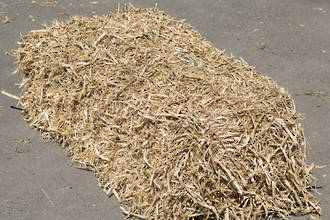 Pea Straw - Compacted Bale (Click and Collect)