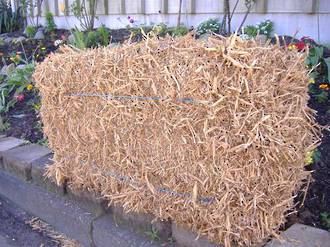 Pea Straw - Bale (Click and Collect)