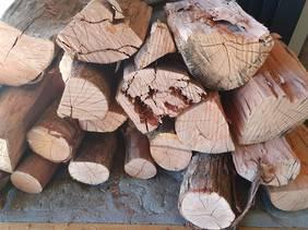 Pohutakawa - Beautiful long burning hardwood from (Limit 1 m3)