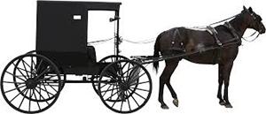 A Horse & Cart
